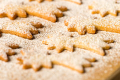 Azúcar en polvo de la estrella del cometa de las galletas de la Navidad de la hornada Fotografía de archivo libre de regalías