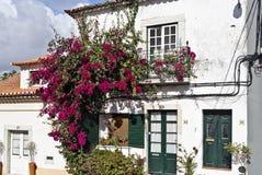 Azeitao traditionell arkitektur Royaltyfria Bilder
