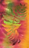 Azeitona no fundo do batik Imagens de Stock