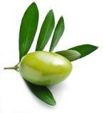 Azeitona verde com folhas Fotografia de Stock