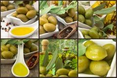 Azeitonas e azeite - colagem fotos de stock royalty free