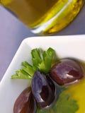 Azeitonas e petróleo Foto de Stock