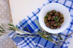 Azeitonas e ramo de oliveira Fotos de Stock Royalty Free