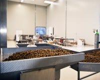 Azeitonas em uma máquina de processamento Fotografia de Stock Royalty Free