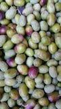 Azeitonas frescas fotografia de stock