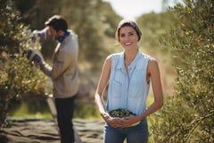Azeitonas levando de sorriso da mulher com o homem no fundo na exploração agrícola imagem de stock