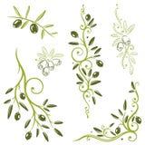 Azeitonas, vegetal Fotografia de Stock Royalty Free