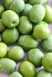 Azeitonas verdes frescas Fotos de Stock Royalty Free