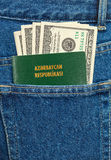 Azerbaijan passport and dollar bills Royalty Free Stock Photography