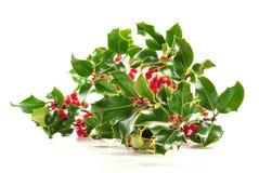 Azevinho do Natal no fundo branco Fotografia de Stock Royalty Free