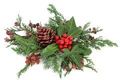 Azevinho e hortaliças do inverno Imagens de Stock