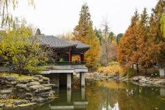 Azië China, Peking, Zhongshan-Park, de herfstlandschap Royalty-vrije Stock Foto