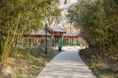 Azië China, Peking, Zizhuyuan-Park, Landschapsarchitectuur, Paviljoen, het bamboe Œgreen van Galleryï ¼ Stock Foto