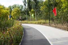 In Azië, Chinees, Peking, Chaoyang-Park, bamboeomheining, bloemen Royalty-vrije Stock Fotografie