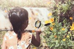 Aziaat weinig kindmeisje die vergrootglas het letten op vlinder gebruiken stock foto