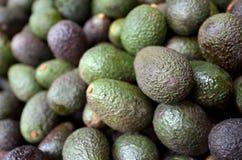 Aziatisch Avocadofruit Royalty-vrije Stock Afbeelding