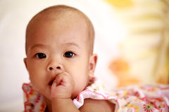Aziatisch babymeisje die haar duim zuigen Royalty-vrije Stock Afbeelding
