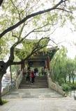 Aziatisch China, Peking, het de Zomerpaleis, xi Di, brug, Paviljoen Stock Afbeelding