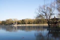 Aziatisch China, Peking, Taoranting-Park, de winterlandschap, paviljoenen, terrassen en open zalen Royalty-vrije Stock Foto