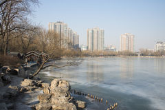 Aziatisch China, Peking, Zizhuyuan-Park Royalty-vrije Stock Foto