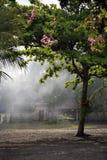 Aziatisch dorp Royalty-vrije Stock Afbeelding