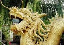 Aziatisch gouden draakbeeldhouwwerk Stock Foto