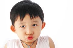 Aziatisch jong geitje Stock Foto's