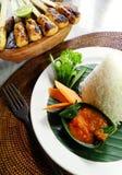 Aziatisch voedsel, vlees kebabs Stock Foto's