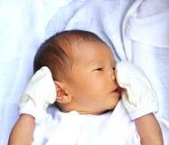 Aziatische baby Stock Foto