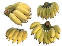 Aziatische banaan op witte achtergrond Royalty-vrije Stock Afbeeldingen
