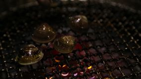 Aziatische BBQ die Verse tweekleppige schelpdieren op een gasgrill roosteren in één restaurant Chinees stock videobeelden