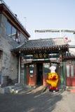 Aziatische Chinees, Peking, Shichahai, de lotusbloemmarkt Royalty-vrije Stock Foto
