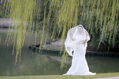 Aziatische Chinese vrouw in huwelijkskleding Royalty-vrije Stock Foto's