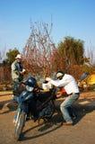 Aziatische cultuur, perzikbloesem, Vietnamese bloempot Royalty-vrije Stock Foto