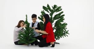 Aziatische familie gemaakt tot takken van Kerstboom stock footage