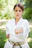 Aziatische het praktizeren karate royalty-vrije stock foto's