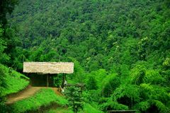 Aziatische hut Royalty-vrije Stock Foto's