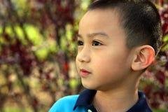 Aziatische Jongen royalty-vrije stock foto's