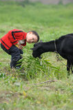 Aziatische jongen die zwarte geit kijkt Stock Fotografie