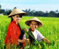 Aziatische landbouwer Royalty-vrije Stock Afbeeldingen