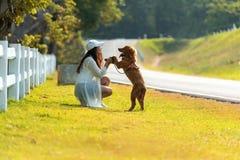 Aziatische levensstijlvrouw die en gelukkig met de hond van de golden retrievervriendschap in zonsopgang spelen openlucht royalty-vrije stock afbeelding