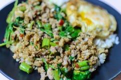 Aziatische maaltijd, kruidig voedsel Stock Afbeeldingen