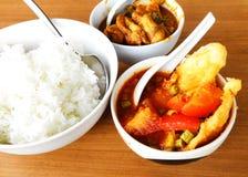Aziatische maaltijd, vissen & plantaardige kerrie royalty-vrije stock foto