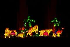 Aziatische omhoog aangestoken tijgerlantaarns Royalty-vrije Stock Afbeeldingen