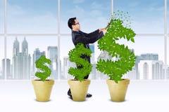 Aziatische ondernemer die de geldboom snijden Royalty-vrije Stock Foto's