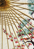 Aziatische parapluclose-up royalty-vrije stock fotografie