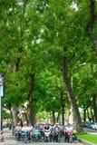 Aziatische stad, grote boom, Vietnamese straat royalty-vrije stock foto's