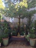 Aziatische tuin Royalty-vrije Stock Afbeelding