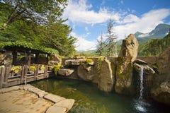 Aziatische tuin met een vijver Stock Afbeelding