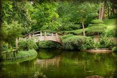 Aziatische tuinen Stock Afbeeldingen